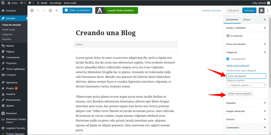 categoria blog en wordpress
