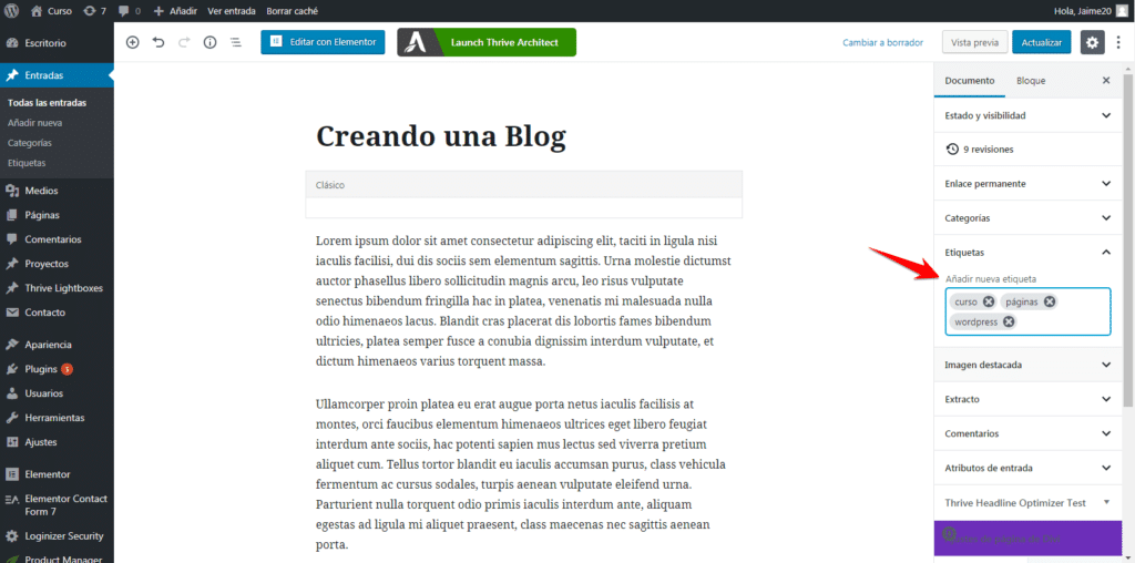 etiquetas blog en wordpress