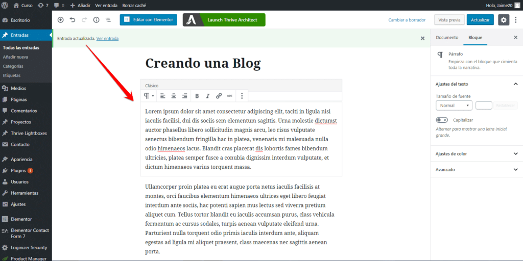 texto Blog en wordpress